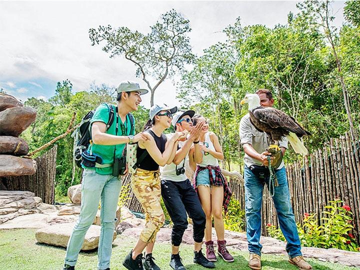 Những màn biểu diễn xiếc thú độc đáo tại Vinpearl Safari Phú Quốc